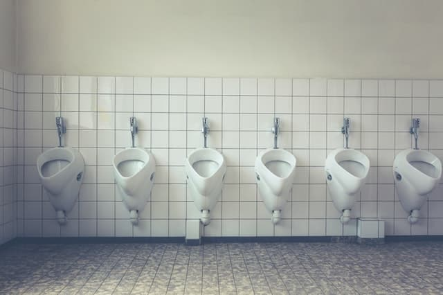 ketosis symptoms - increased urination
