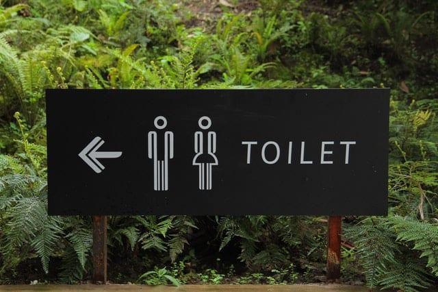 ketosis symptoms - toilet issues