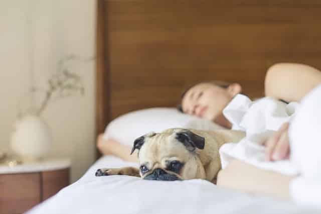 ketosis symptoms - insomnia